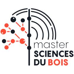 Logo Master Bois